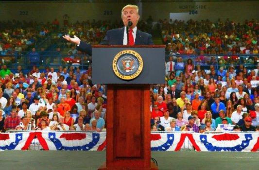 The President of the United States - Grafik von John Burgess 2016