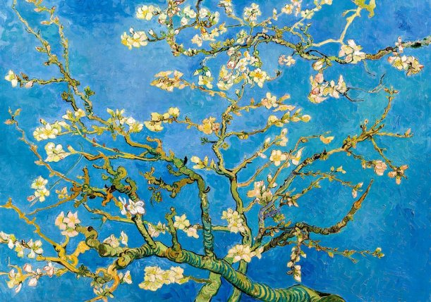 Vincent van Gogh Zweige mit Mandelblüten 1890. - Foto © Van Gogh Museum Amsterdam